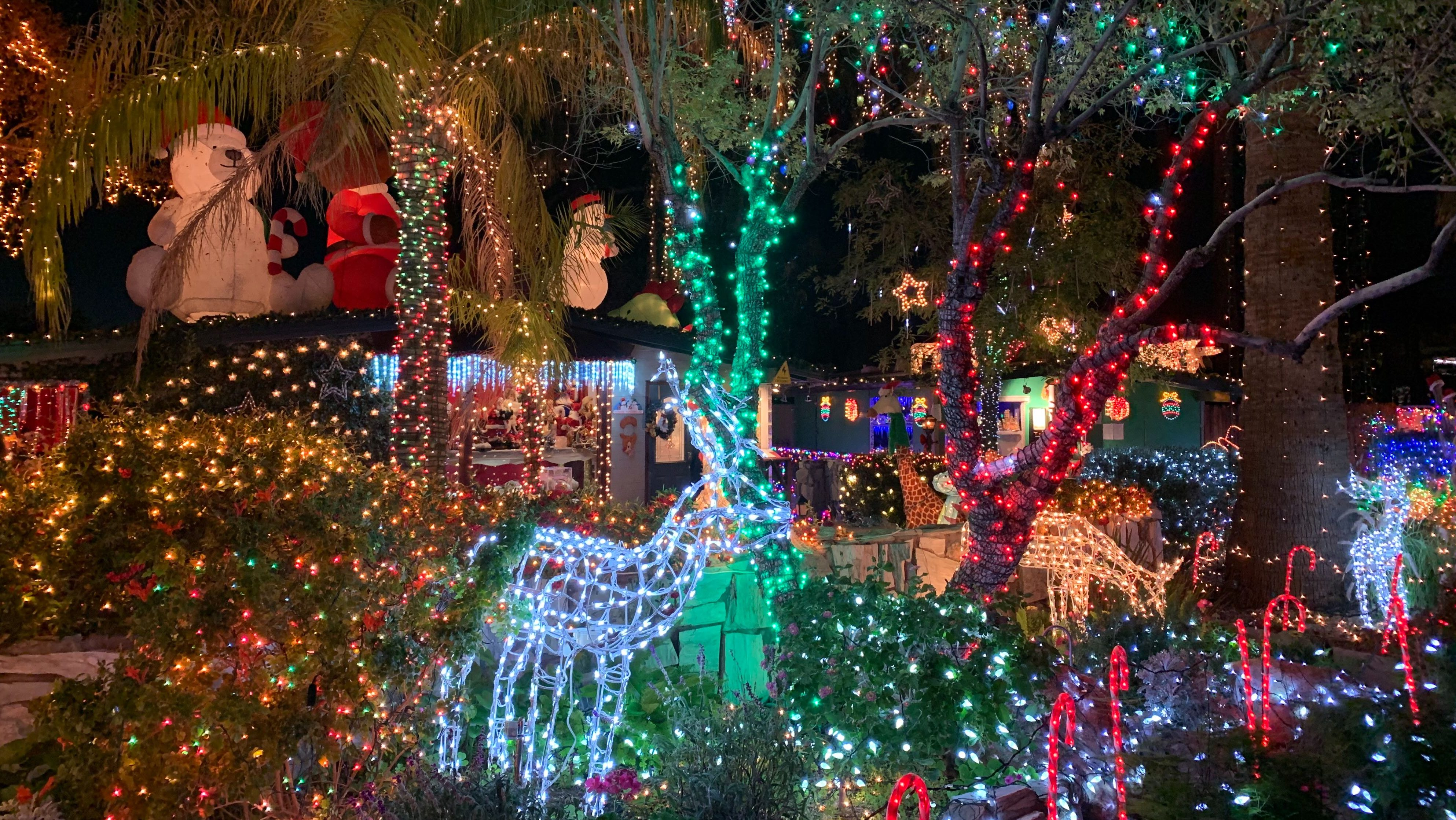Best Christmas Light Displays For 2019